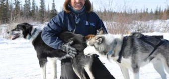 Sled Dogs, Polar Bears, and Hardy People