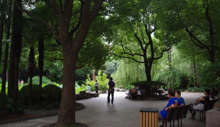 7 Shanghai garden