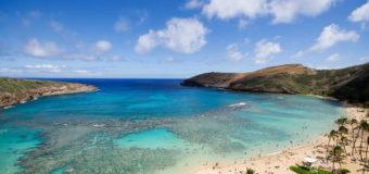 Hit The Beaches in Hawaii … Carefully.