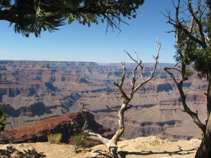 grand-canyon-view