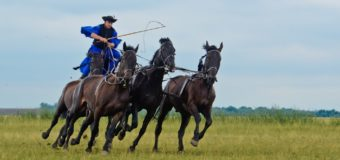 Cowboys in Hungary? Believe It!